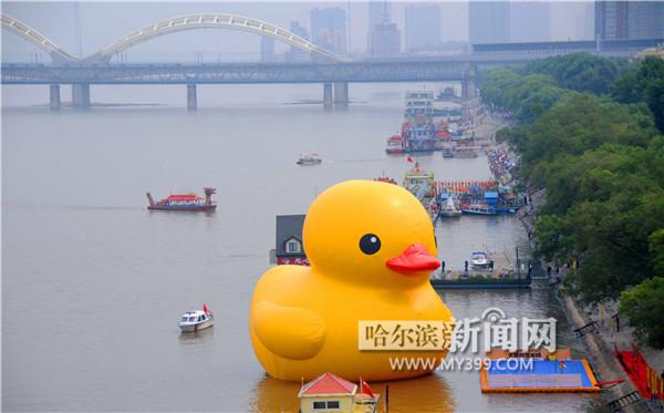 大黄鸭在哈尔滨