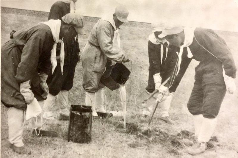 在田间捉鼠,并进行解剖、检测鼠疫杆菌。1949年,热河赤峰市市郊